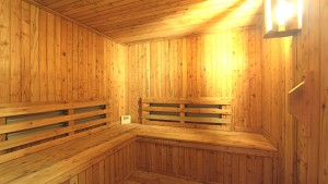 sauna resized 550